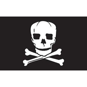 Jolly Roger Boutique Flag (3'x5')