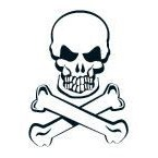 Glow in the Dark Skull and Crossbones Temporary Tattoo