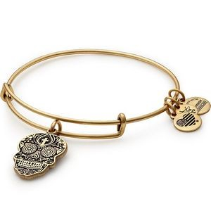 Alex and Ani® Rafaelian Gold Finish Calavera Charm Bangle
