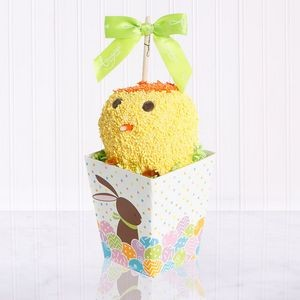 Spring Chick Caramel Apple Sweet Treat Gift Box